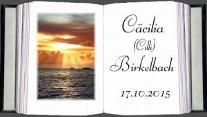 cilli_birkelbach_2015