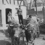 Eva Kaspar geb. Specht, Walter Linscheid und Bernhard Kaspar in der Mittelstrasse 21 ( Leitz )